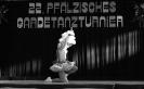 pfalzmeisterschaft-003